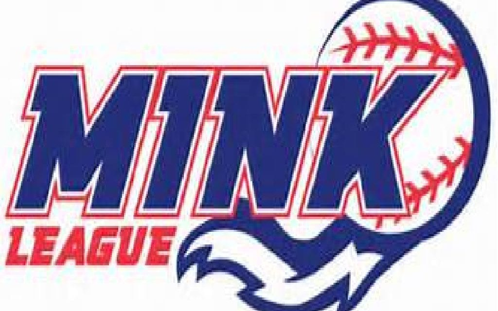 New Teams Added to MINK League for 2020